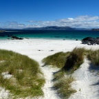 MULL AND IONA  – 3 days on the white sand beaches of wildlife central