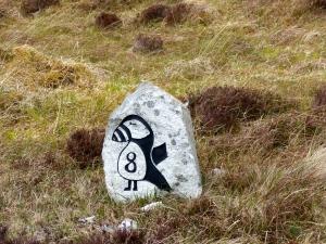 A Puffin milestone - 8 mile marker