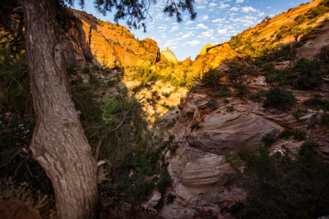 overlook-walk-edge-is-the-walking-route