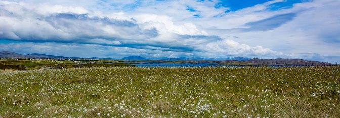 n uist landscape