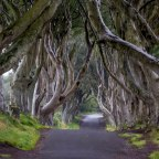 DONEGAL AND THE CAUSEWAY COAST (Dark Hedges and Grianan Aileach Ring Fort)